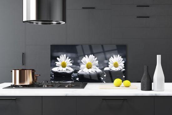 tulup.si Stenska plošča za kuhinjo Daisy stones rastlin