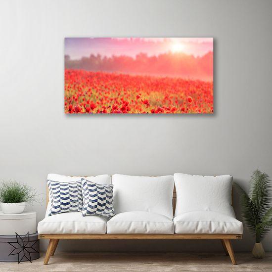tulup.cz Obraz na plátne Lúka kvety príroda 120x60cm