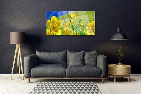 tulup.hu Üvegkép Rainbow mezei virágok Természet