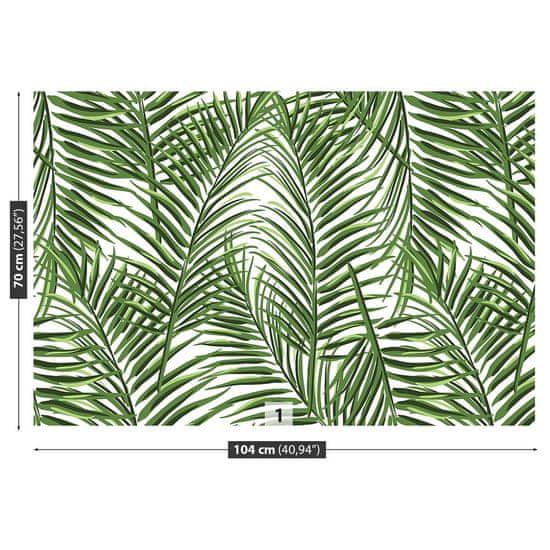 tulup.si Stenska fototapeta Palm listi
