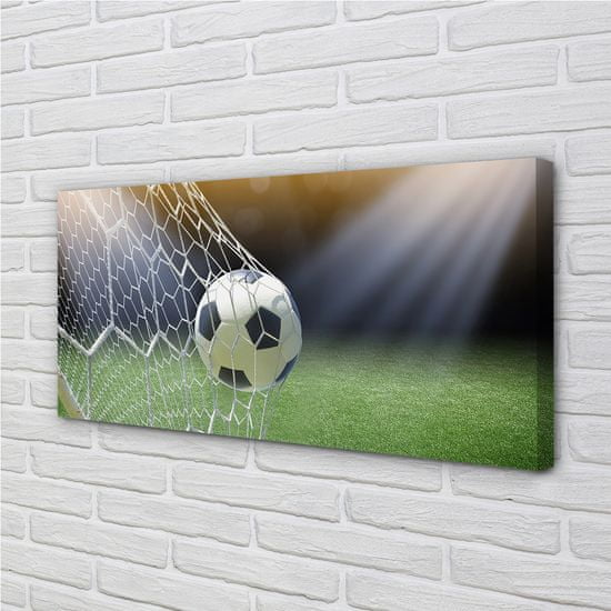 tulup.cz Obraz canvas Futbalový štadión 120x60cm