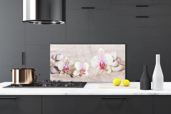 tulup.hu Konyhai üveg fali panel Orchidea Orchidea Sand