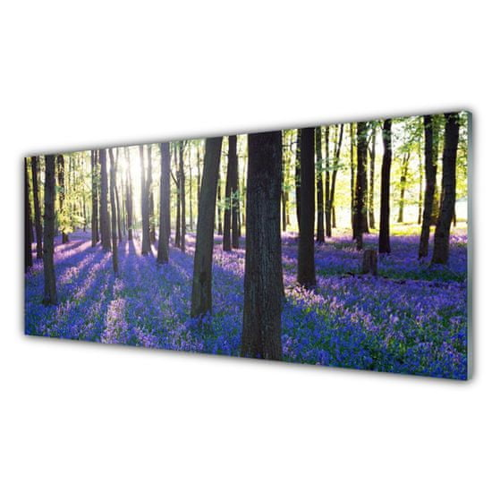 tulup.cz Nástenný panel Les príroda 125x50cm