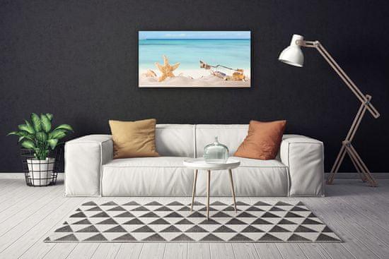 tulup.cz Obraz Canvas Hviezdice mušle pláž 120x60cm
