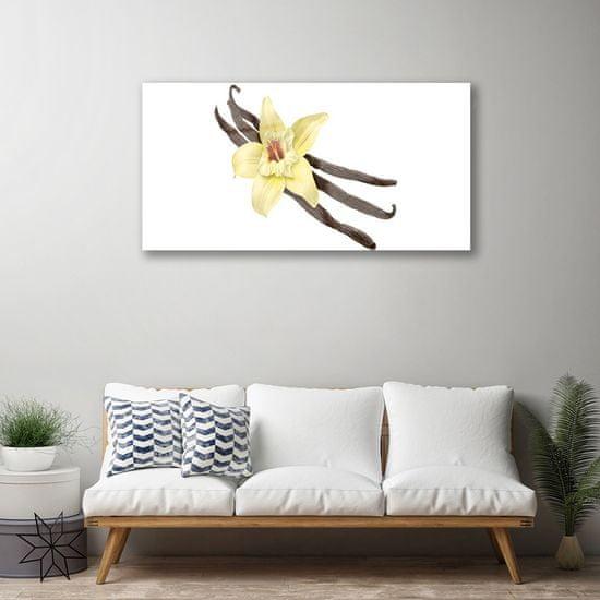 tulup.cz Obraz na akrylátovom skle Kvet rastlina príroda 100x50cm