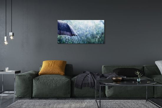 tulup.si Slika na platnu Krovne dež kapljic