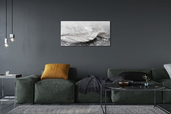 tulup.cz Obraz canvas Kvapky perie makro 120x60cm