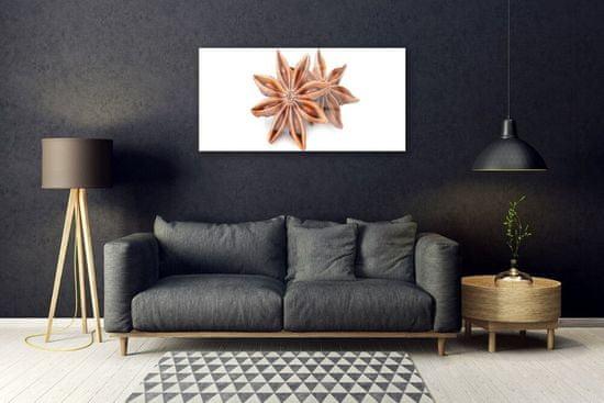 tulup.cz Skleneny obraz Aníz hviezda príprava 120x60cm