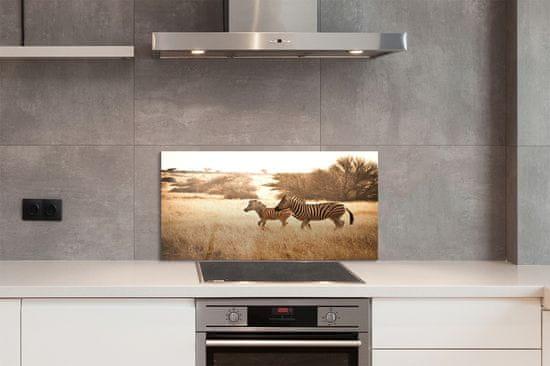 tulup.sk Nástenný panel Zebra poľa sunset