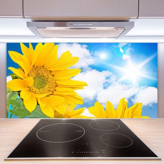 tulup.si Stenska plošča za kuhinjo Cvetovi rastlin narava
