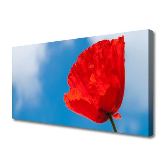 tulup.si Slika na platnu Tulip na wall