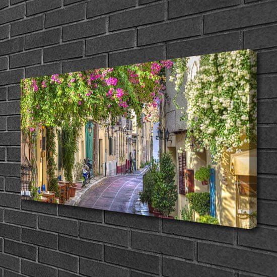 tulup.hu Vászonkép nyomtatás Házak Alley Flowers Plant