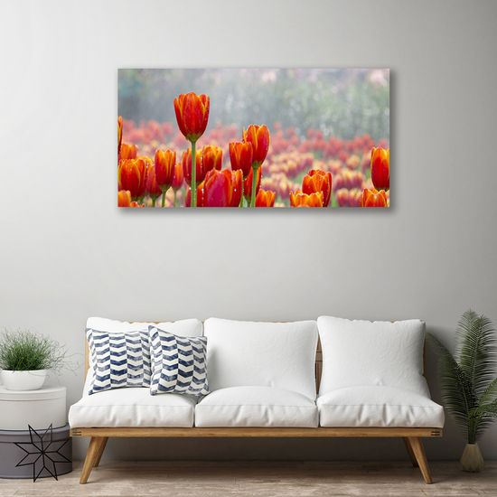 tulup.cz Obraz Canvas Tulipány kvety rastlina 100x50cm