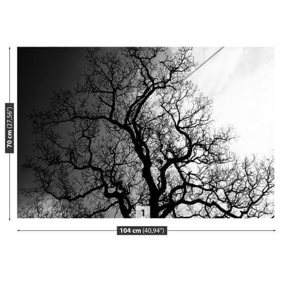 tulup.cz Fototapeta Vliesová Strom 104x70 cm
