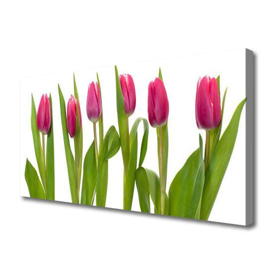 tulup.hu Vászonkép nyomtatás Tulipán virágok Plant