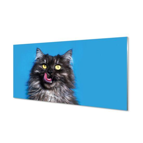 tulup.cz Nástenný panel Oblizujący mačka 125x50cm