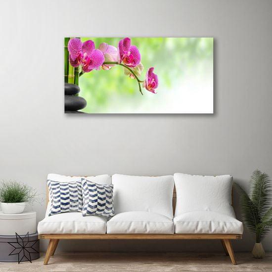 tulup.si Slika na platnu Narava bambusa cvet