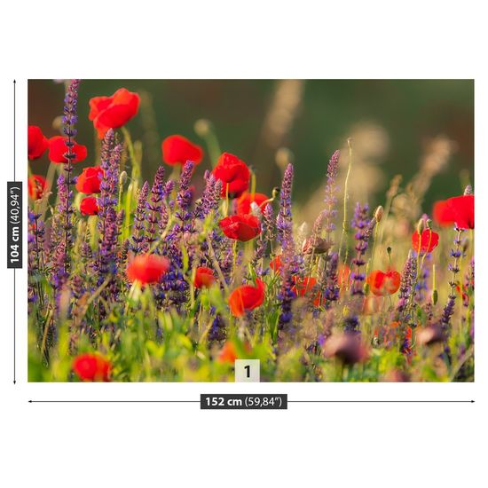 tulup.cz Fototapeta Samolepící Poľné kvety 152x104 cm