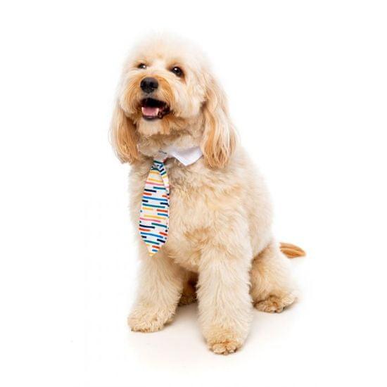 Fuzzyard kravata za pse ali mačke LORD CARNABY