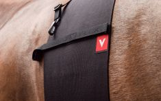 VETOFLEX Ochranný Pás pro koně VETOFLEX Classic BELLY BAND, cob
