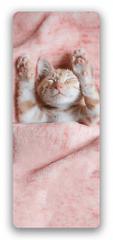 3D záložka Kotě - Záložky do knihy