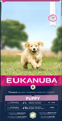 Eukanuba hrana za psa Puppy Large & Giant Lamb, 12 kg