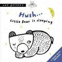 Hush... Little Bear Is Sleeping