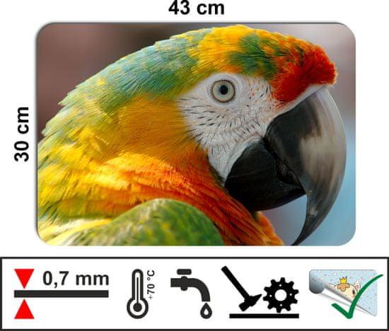RoomDecor.eu Prestieranie-374 Papagáj, 4 Ks