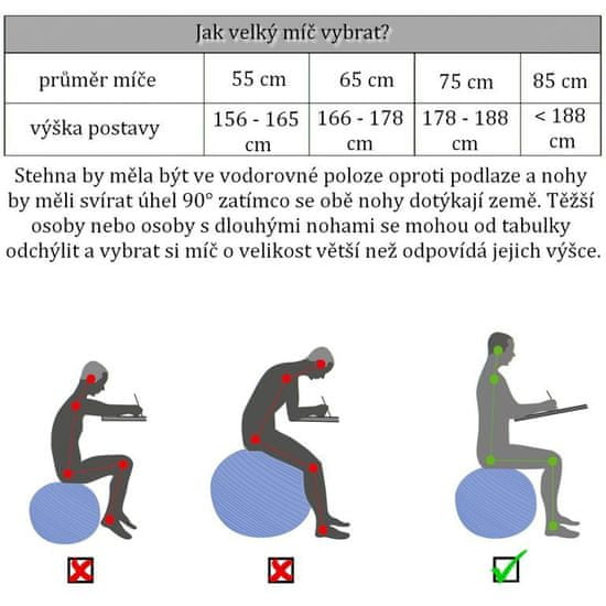 shumee Gimnasztikai labda MOVIT® 85 cm - lila