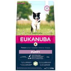 Eukanuba hrana za psa Puppy Small & Medium Lamb, 2,5 kg