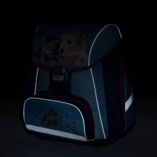 Karton P+P šolski komplet PREMIUM hišni ljubljenčki