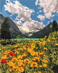 Kouzelný Art Malování podle čísel Velkolepé Alpy