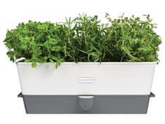 Cole Mason Samozavlažovací květináč pro uchování bylinek - trojitý