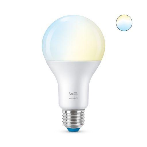 Philips WiZ Tunable White 100W E27 A67