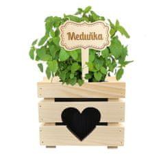 AMADEA Dřevěný zápich - cedulka na bylinky Meduňka, výška 20 cm, český výrobek