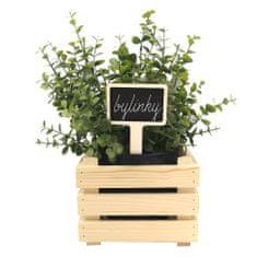 AMADEA Dřevěný zápich - cedulka na bylinky, výška 15 cm, český výrobek