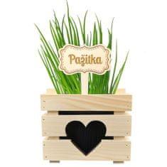 AMADEA Dřevěný zápich - cedulka na bylinky Pažitka, výška 20 cm, český výrobek