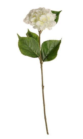 EverGreen Hortenzia, kv. 14 cm, výška 62 cm biela