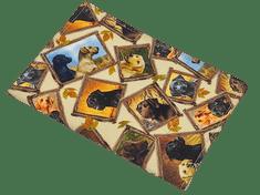 Šišipu Obal na očkovací průkaz psa nebo kočky Labrador