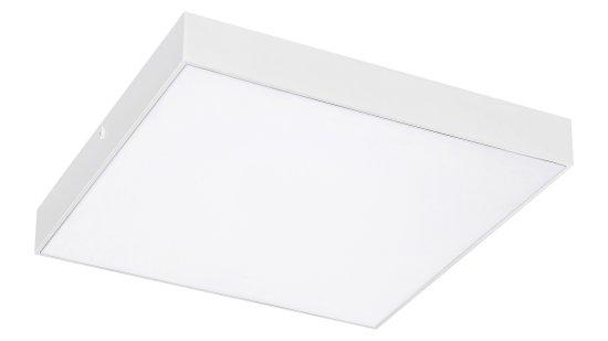 Rabalux 7895 Tartu stropna LED svetilka, zunanja