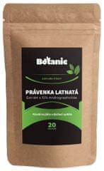 Botanic Právenka 10% Andrographolide 20g