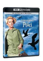 Ptáci (2 disky) - 4K Ultra HD + Blu-ray