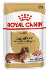 Royal Canin Dachshund pasja hrana, 12x85g