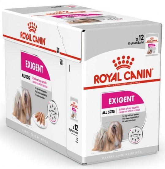 Royal Canin Exigent Dog Loaf hrana za pse u vrećama, 12x 85 g
