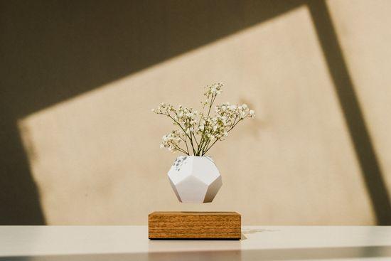 Flyte Levitující designový květináč LYFE Planter WALNUT