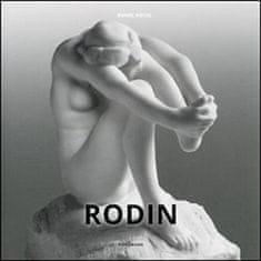 Daniel Kiecol: Rodin