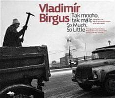Vladimír Birgus: Tak mnoho, tak málo - Fotografie z let, kdy se tak mnoho muselo a tak málo smělo