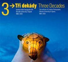 Vladimír Birgus: Tři dekády - Three Decades