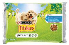 Friskies Junior s kuřetem a mrkví ve šťávě 40 x 100 g