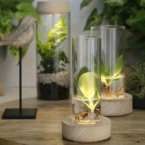 Ideas4Seasons Vaza - steklena z LED lučko in lesenim podstavkom